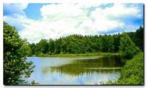 Žabljek - Videž nature park